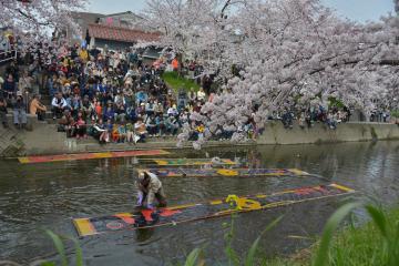 岩倉五条川の桜まつりアクセス・駐車場・混雑・トイレ情報!!2018年【まとめ】